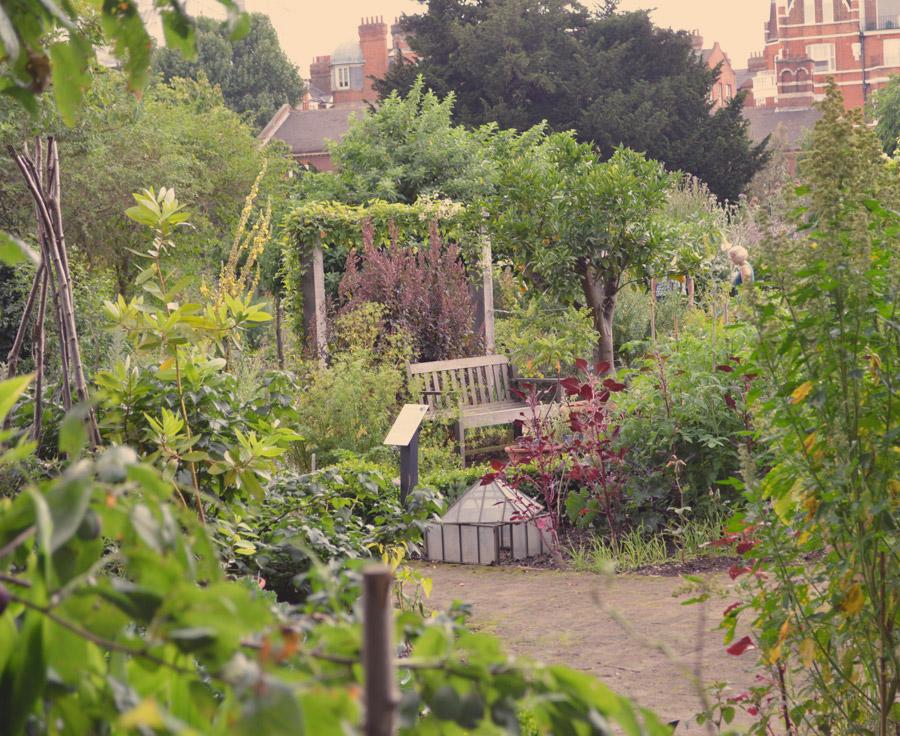 Garden-overview